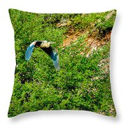 Heron Flies Over Oak Creek In Red Rock State Park Sedona Arizona Throw Pillow