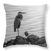 Heron In Black And White Throw Pillow