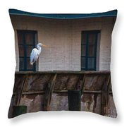 Heron In The Window Throw Pillow