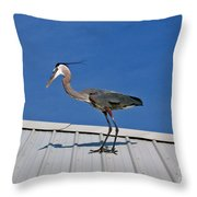 Heron On Rooftop Throw Pillow