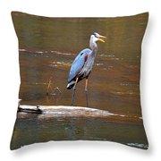Heron On The Creek Throw Pillow