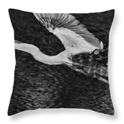 Heron On The Move Up Close Throw Pillow