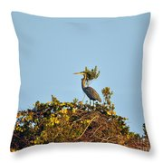Heron Perch Throw Pillow