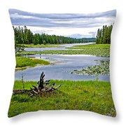Heron Pond In Grand Teton National Park-wyoming   Throw Pillow