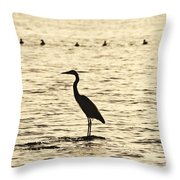 Heron Standing In Water Throw Pillow