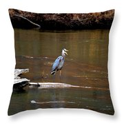Heron Talking Throw Pillow