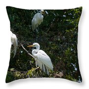 Heron Trio Throw Pillow