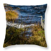Heron Watchful Eye Throw Pillow