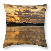 Herons And Egrets And Porpoise Oh My Throw Pillow