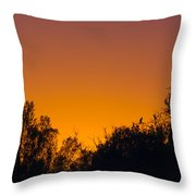 Herons Dans Le Soleil Couchant Throw Pillow