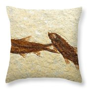 Herring Fish Fossil Throw Pillow
