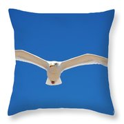 Herring Gull In Flight Throw Pillow