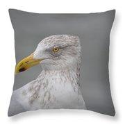 Herring Gull Throw Pillow