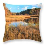 Herring River Cape Cod Marsh Grass Autumn Throw Pillow