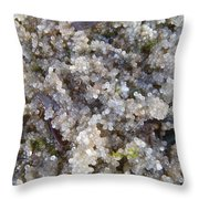 Herring Roe Ashore Throw Pillow