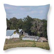 Hex Sign Barn Throw Pillow