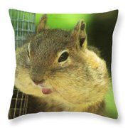 Hey Check Out My Big Cheeks Throw Pillow