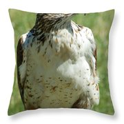 Hey George Over Here Throw Pillow