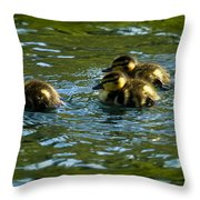Hey Guys - What's That Throw Pillow