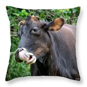 Hey Look What I Found Throw Pillow