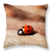 Hey There Little Lady Bug Throw Pillow