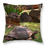 Hey - What About Me Throw Pillow
