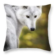 Hey You Throw Pillow