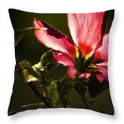 Hibiscus 03 Throw Pillow