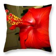 Hibiscus 12 Throw Pillow by M Landis