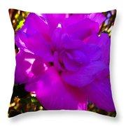 Hibiscus 4 Throw Pillow