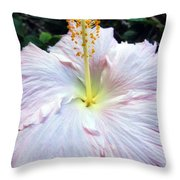 Hibiscus 41 Throw Pillow