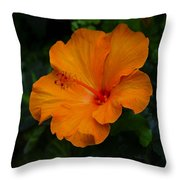 Hibiscus 9 Throw Pillow