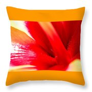 Hibiscus Abstract In Red And Yellow Throw Pillow