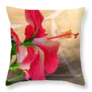 Hibiscus Along The Walk Way Throw Pillow