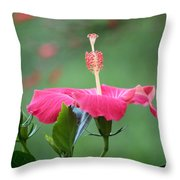 Hibiscus Ballerina Throw Pillow