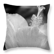 Hibiscus Bw Throw Pillow
