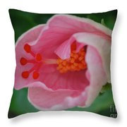 Hibiscus Flower Blooming Throw Pillow