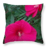 Hibiscus Flower Times Two Throw Pillow