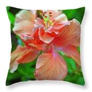 Hibiscus IIi Throw Pillow