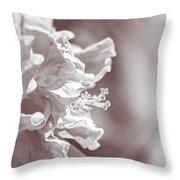 Hibiscus In Sunlight Throw Pillow