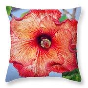 Hibiscus - Mahogany Star Flower Throw Pillow