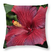 Hibiscus Night Fire 2 Of 2 Throw Pillow