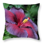 Hibiscus Night Fire Throw Pillow