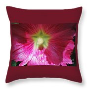 A Hibiscus Discovered On Boston Common Throw Pillow