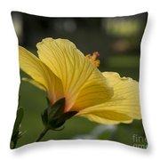 Hibiscus 'sunny Wind'  3407 Throw Pillow