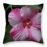 Hibiscus - Turn Of The Century Throw Pillow