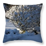 Hibiskus In The Wintertime Throw Pillow