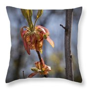 Hickory Bloom Throw Pillow
