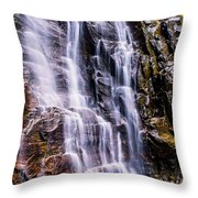 Hickory Nut Falls Throw Pillow