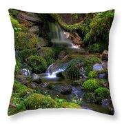 Hidden Brook Throw Pillow